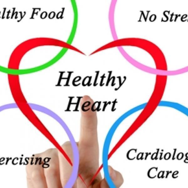 جراح قلب | جراح قلب مشهد | دکتر نظافتی | جراح قلب خوب | بهترین جراح قلب مشهد | بهترین جراح قلب ایران | جراح قلب خوب مشهد | جراح قلب ایران | جراح قلب خوب ایران | با ۱۹ روش از قلب خود محافظت کنید